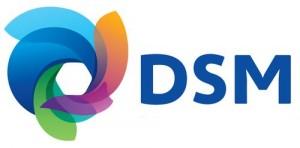 Logo_DSM